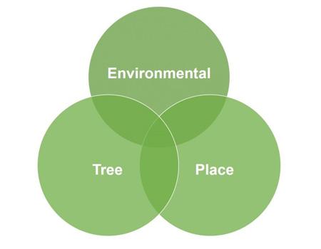 Tree factor chart